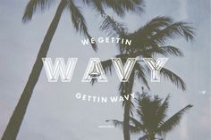 Wavy #palm #tree #design #type #wavy #typography