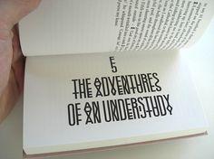 The Adventures of an Understudy