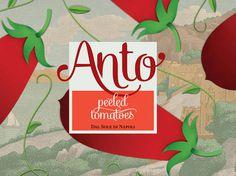 Anto #logotype #identity #typography