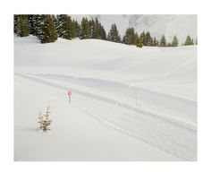 Ski, sign and trees | Flickr - Photo Sharing! #skiing #snow