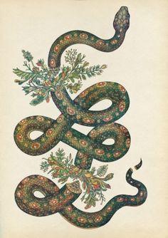 Tropical Snake Print
