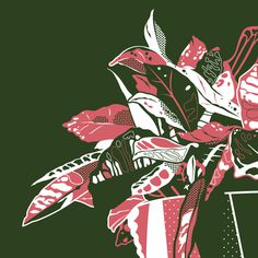 still life #illustration #plant #silkscreen