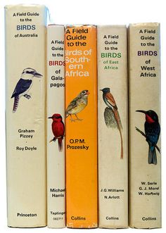 ➽ Daily Daily Daily Daily... #book #birds #spin #daily