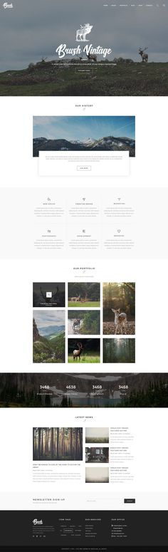 Brush – Photography