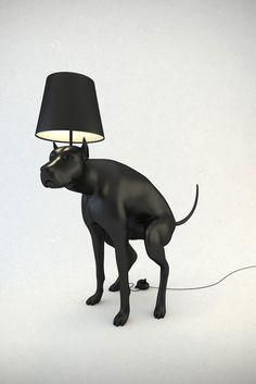Hello, My name is Whatshisname #interior #dog #black #lamp