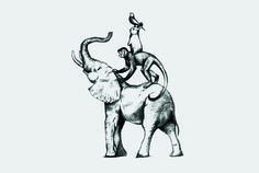 #logo #illustration #Bienal #animal #identity