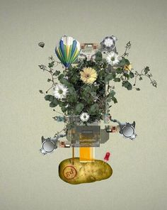land.jpg (600×752) #air #power #land #floral #hot #balloon #potato #ivy