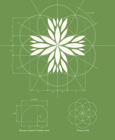 Czech Medical Herbs logo design #logo #design #identity #branding