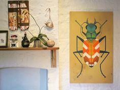 Amok Island - Tiger Beetle