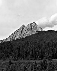Only the great generalizations survive - but does it float #mountain #photography