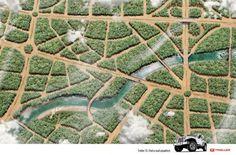 Troller T4: Forest #keystone