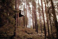 """Baumhaus Hotelzimmer in Schweden: In einem Wald bei Norrbotten stehen """"The... #forest #architecture"""