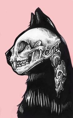 In-side Skeleton Cat