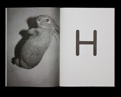 hysysk. #blackwhite #photo #book #letter #rabbit
