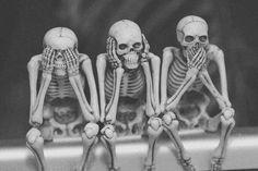 tumblr_lslsy8Cedc1qbm36fo1_500.jpg (500×333) #skulls