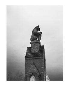 #bear #berlin #vsco PHOTOGRAPHIE © [ catrin mackowski ]