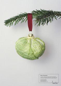 Munchner Tafel Cabbage gift #lettuce