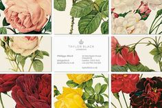 Taylor Negro - interabang #business #card #print #flower #cards