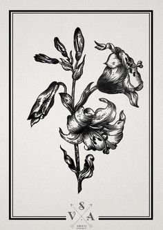 "Тату салон ""Master #floral #pen and ink"