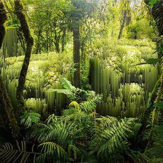 #jungle #landscape #pixel #glitch #processor