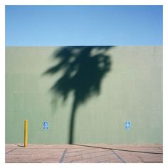 Photography by George Byrne (4)