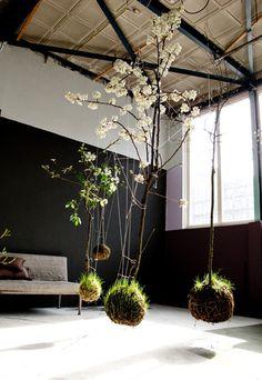 string gardenshttp://www.stringgardens.com/ #garden #string #hung #instalation