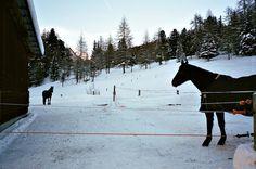 ph.: Fabrizio Raschetti #raschetti #fabrizio #photography #art