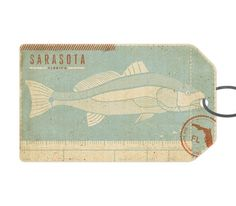 FFFFOUND! | Sarasota - The Everywhere Project #sarasota #fish