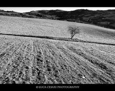 Black and White Photography by Luca Cesari | Professional Photography Blog #inspiration #white #black #photography #and