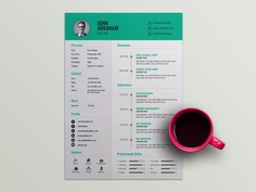 Free Professional Director Resume Template with Timeline Design