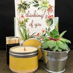 Thinking of You Succulent. Wood Wick Soy Candle Gift Box - candle gift box