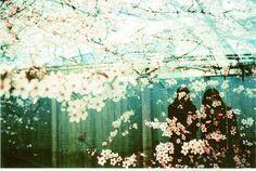 4425249106_b7696f4558_z.jpg (JPEG Image, 640x432 pixels) #honeyuck #photography #film