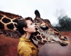 http://kirtan.tumblr.com/post/36404824634 #color #giraffe