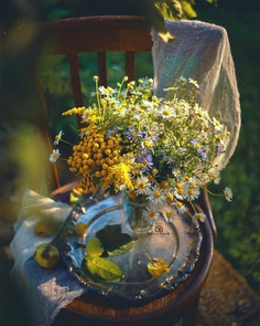 Fine Art Flowers Photography by Tatyana Mironova