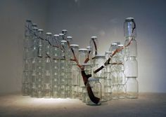 http://-staycold.tumblr.com/post/2924167346 #branch #jars #art #installation