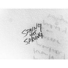Handlettering #type #lettering #handlettering #handdrawn