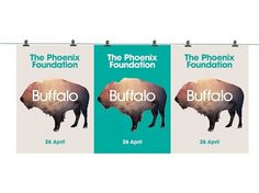 The Phoenix Foundation Buffalo | Packaging of the World: Creative Package Design Archive and Gallery #foundation #phoenix #designworks #the #poster #music