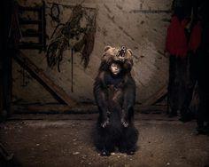 Fine Art Documentary Photography by Tamas Dezso #inspiration #photography #documentary