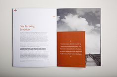 verlassoVerlasso Sustainability Brochure #print #brochure #grid #type #layout #spread