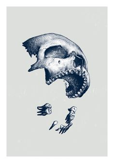 visualgraphc: Marceau Truffaut: Ni dieux ni maitres #illustration #skull #separate #deconstructed #bones #teeth #jaw #macabre #design #art