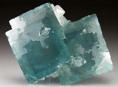 OTAKU GANGSTA #square #mineral