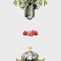 Flora/Fauna #illustration #collage #animal #nature