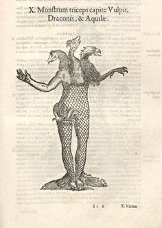 000385 #naturalism #aldrovandi #illustration #latin #ulisse #monster #drawing