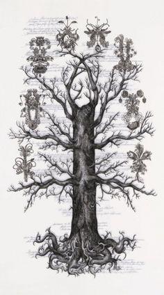 Angela Su (www.angela-su.blogspot.com) #ink #white #amphitheatrum #black #anatomiae #angela #su #calloipe