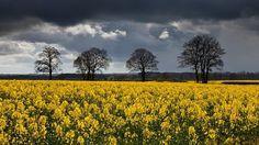 Landscape Photography by Jason Theaker » Creative Photography Blog #inspiration #photography #landscape