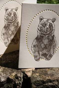Bruce the Bear - Set of 6 Letterpress Cards, from: http://www.etsy.com/shop/MinkLetterpress: #letterpress #illustration #etsy #bear #mink
