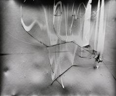 Klea McKenna, Grassland Photograms