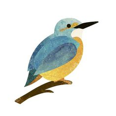 Ben Satchell #illustration #wildlife #bird #kingfisher