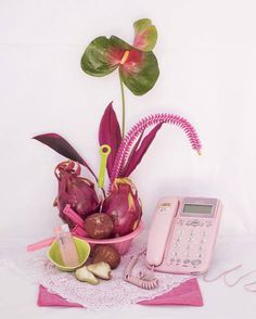 still life ikebana inspired photography by sandy ley