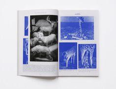 books, graphic design